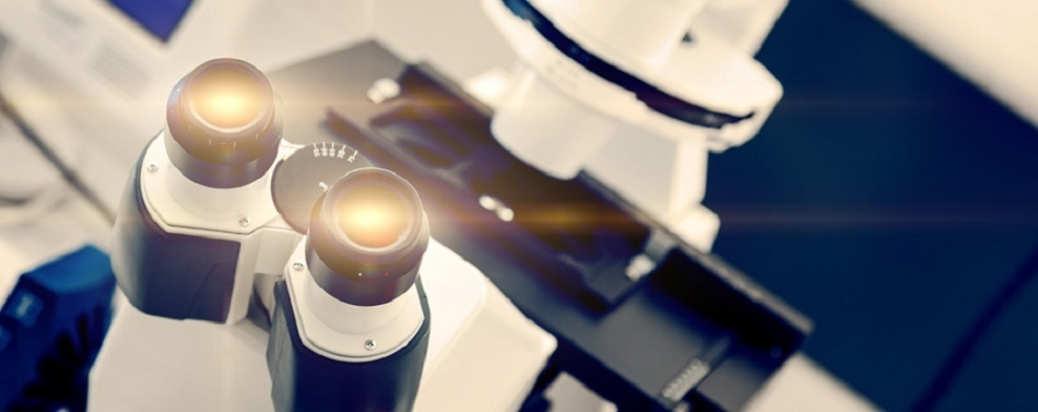 5 Tools Everyone In The Electron Microscopy Industry Should Be Using